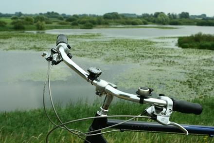 fiets_in_biesbosch